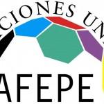 afepe (1)